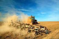 wheat fields tilling